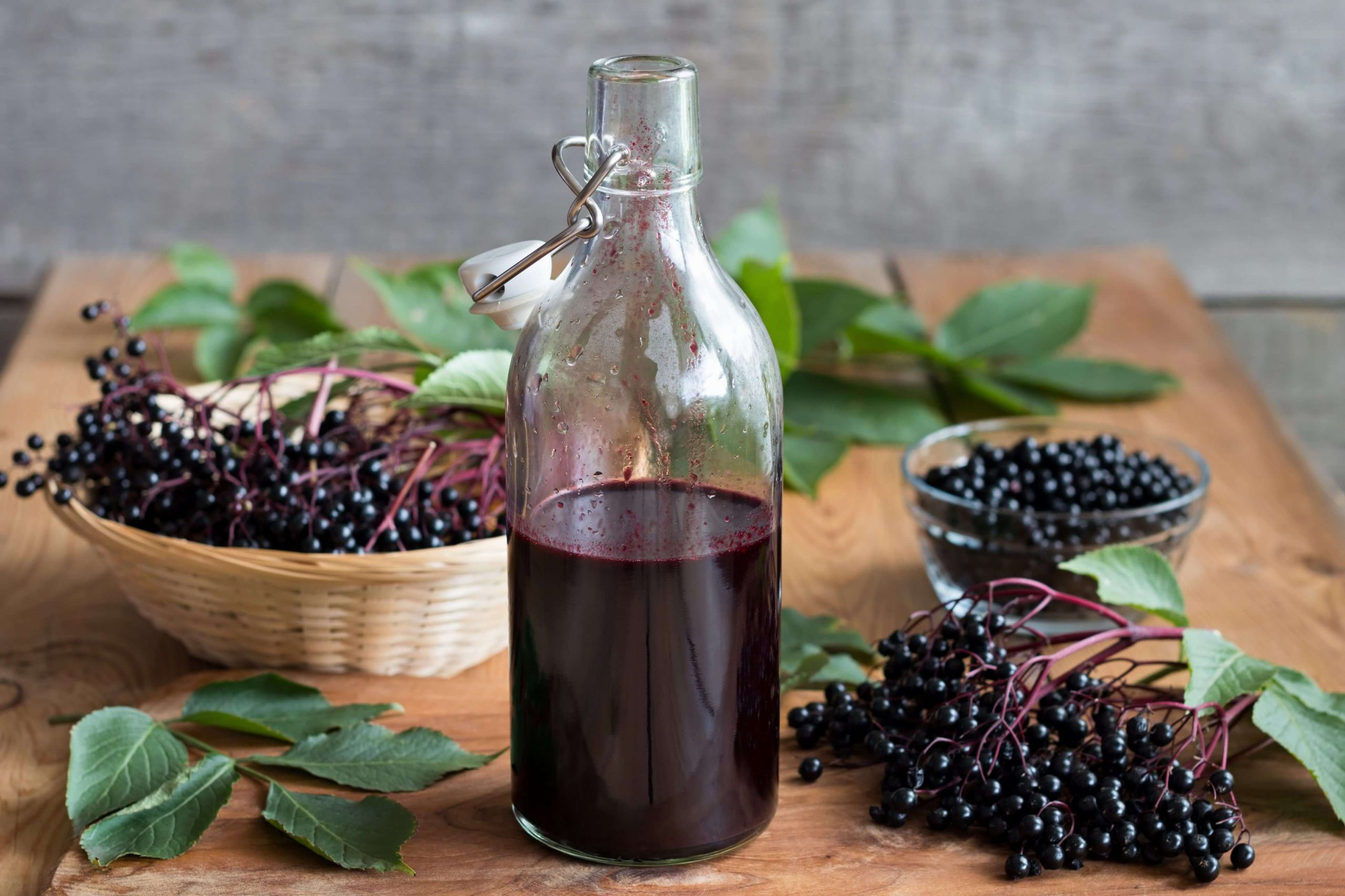 Elderberries: The New Face of California Hedgerows