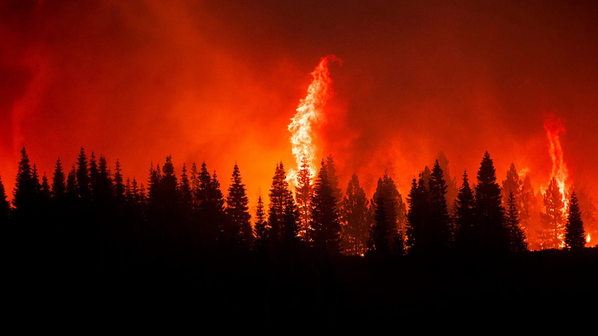 Making Sense of the Wildfires